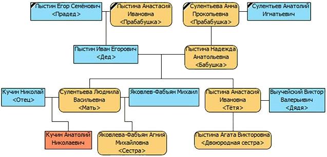 Как сделать генеалогическое древо семьи фото 250