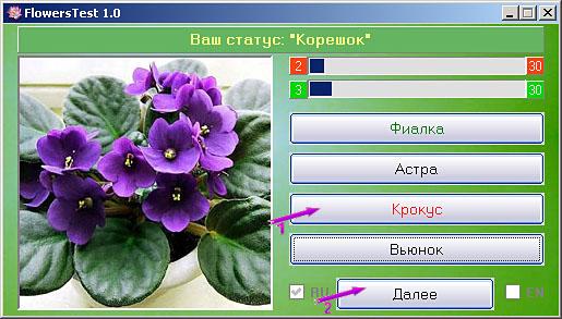 Работа в программе FlowersTest 1.0