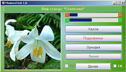 Игра угадай цветок по картинке