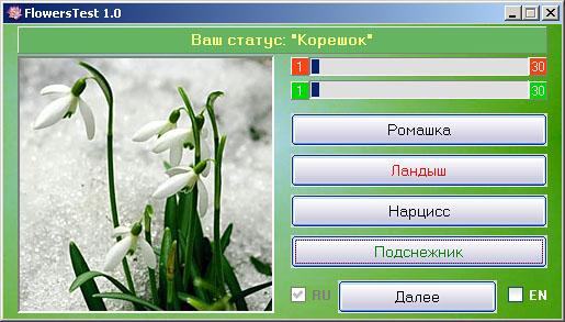 Цветок подснежник фото