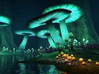 грибы которые светятся