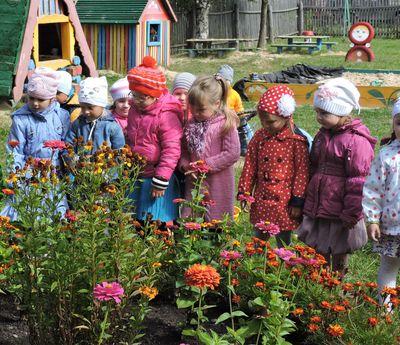 Экологическая тропинка - проект в детском саду