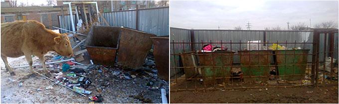 Загрязнение мусором в районе моего села