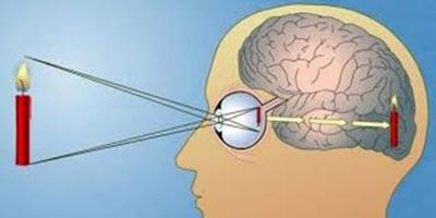 физика зрения 5