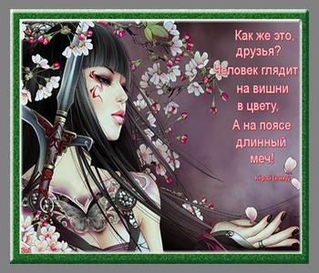 хокку 5