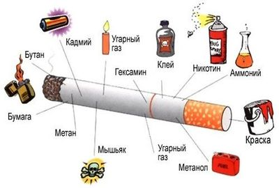 Здоровый образ жизни вред алкоголя и табачных изделий как и где получить лицензию на продажу табачных изделий