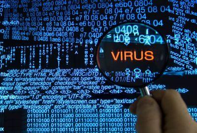 kogda-poyavilsya-kompyuternyiy-virus.jpg