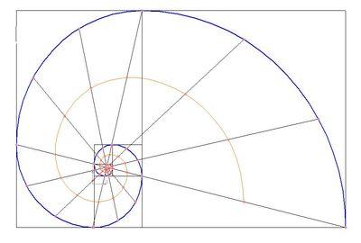 математические кривые
