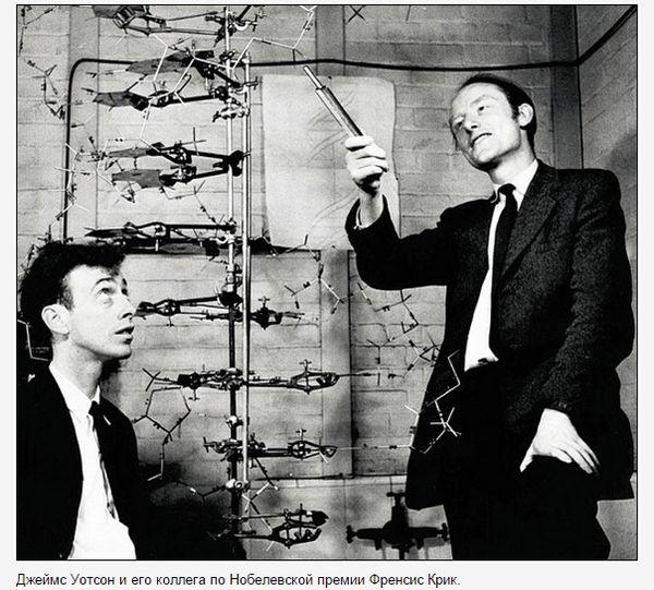 Молекула ДНК - Джеймс Уотсон и Френсис Крик