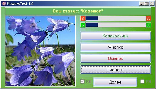 Цветок Колокольчик фото