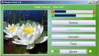 Цветок Кувшинка фото
