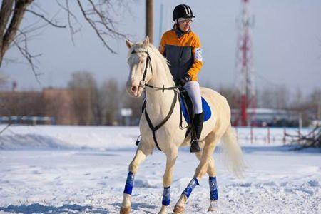 кони 2