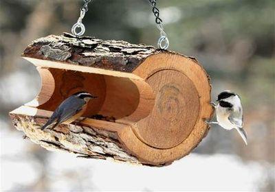 кормушка для птиц 3
