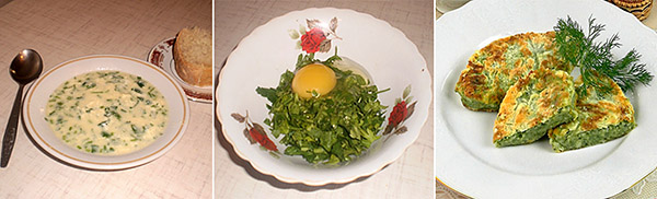 Крапива в кулинарии