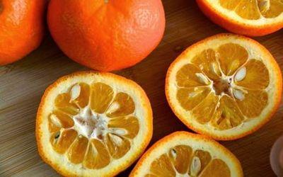 родина апельсина