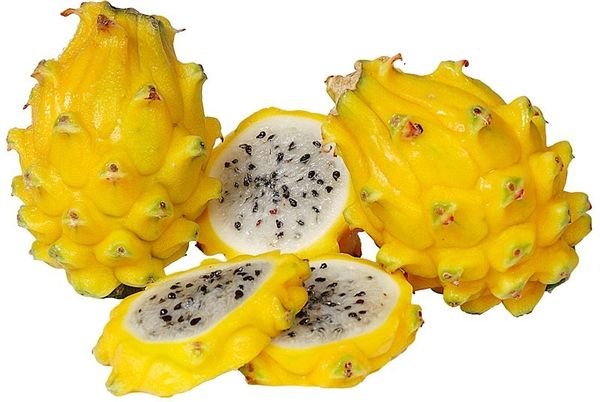 Жёлтая питай (драконий фрукт)