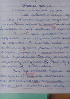 пример почерка 2