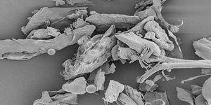 минеральные частицы