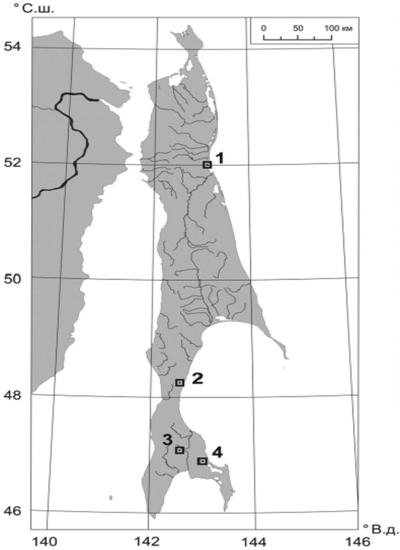 сахалинские грязевые вулканы 1