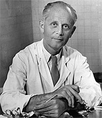 Канадский физиолог Ганс Селье