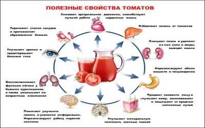 томат 3