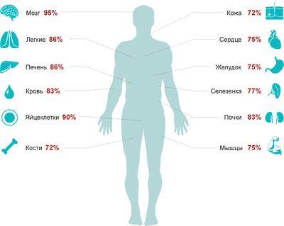 Человек на 80% состоит из воды