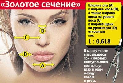 Золотое сечение и лицо человека